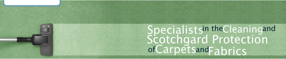 Specialists in the cleaning and Scotchgard protection of carpets and fabrics